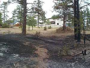 Defensible space around your home for Building a defensible home